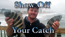 Show off your catch - Fishing Forum