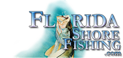 Fish from Florida Shores