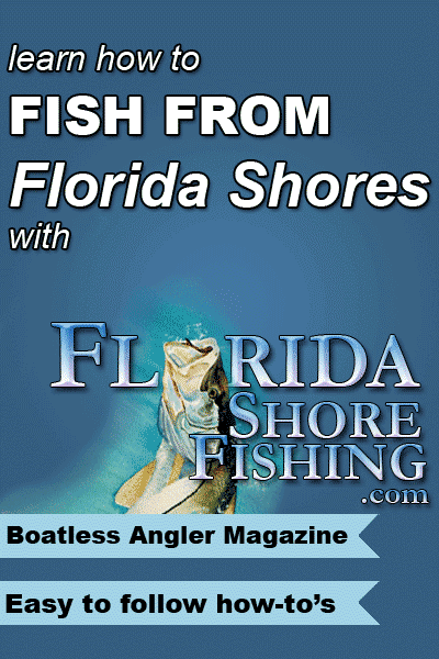 Learn how to fish from Florida shores.  A entire website dedicated to boatless anglers, featuring informative articles, angler blog, a forum and more.