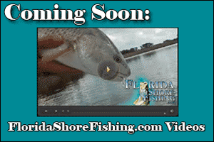 Florida Shore Fishing Videos coming soon!