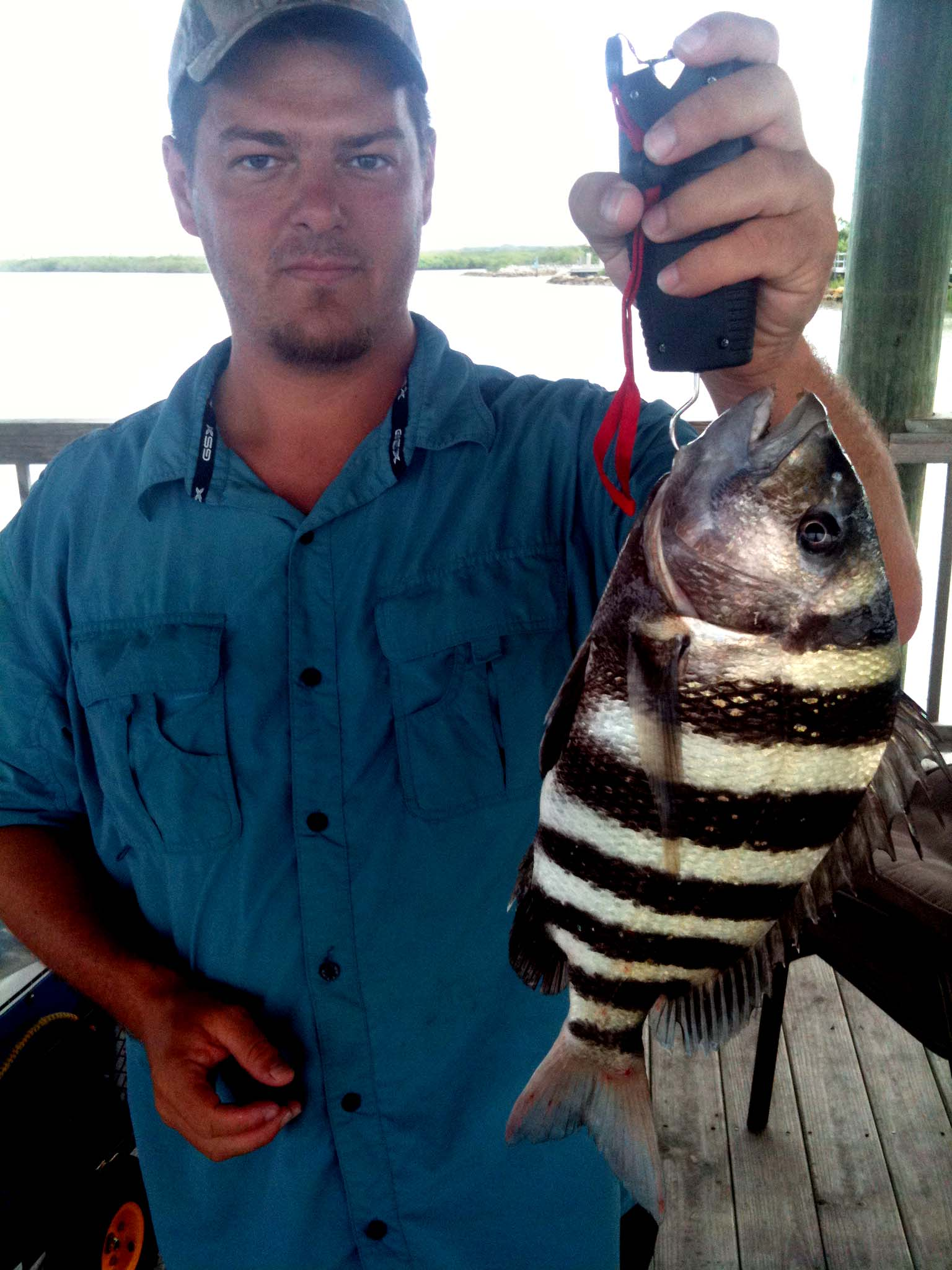 Sheepshead My Love Hate Relationship Fishing From